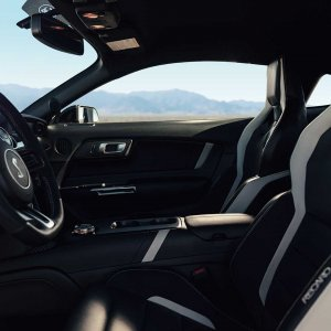 2020-ford-shelby-gt500-92.jpg